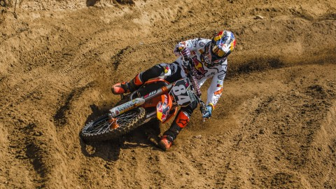 Home herlings